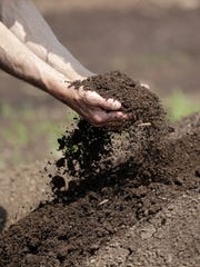 Mark Peterson digs into the compost on the Petersen