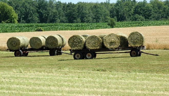 Farmers across Wisconsin are enjoying and anticipating good to very good yields of crops.