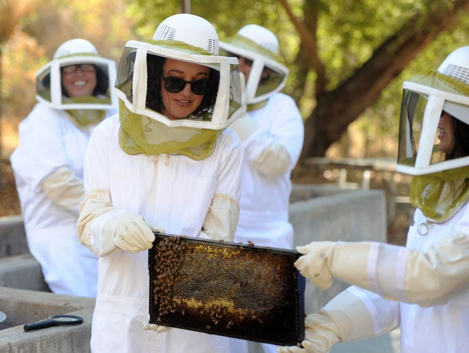 Merissa Stith, left, and Hollie O'Dea hold a honeycomb