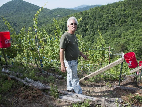 Moving to his mountaintop property to generate wind and solar power, Tom Mincarelli saw potential for a vineyard as well.