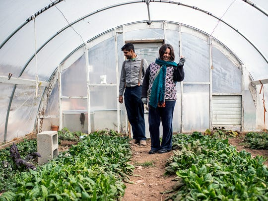 Sunil Patel, left, of Patchwork Urban Farms, and Darcel Eddins of Bountiful Cities, stand inside a greenhouse at Eddins' urban farm in Montford that is helping Patel grow his business.