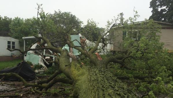 A large, rotted tree fell on a mobile home Thursday in Des Moines.