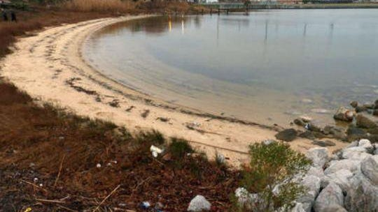 The proposed fish hatchery on Bruce Beach will not be discussed at Thursday's Pensacola City Council meeting