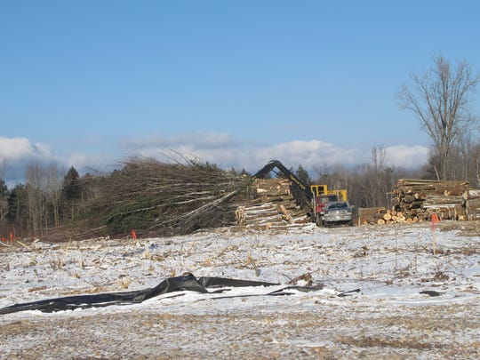 Logs from ground-clearing are sawed and stacked last month in Shelburne at the site of a proposed 19-acre Vermont Railway transfer station for road salt shipments. The 32-acre parcel lies adjacent to the LaPlatte River.