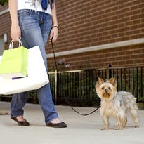 Ask LaFleur: Are pets allowed in Greenville stores?