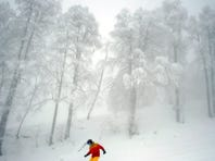 A snowboarder  takes a run on Dec. 22, 2012 at the Rosa Khutor Mountain Resort in Krasnaya Polyana outside the Russian Black Sea resort of Sochi.