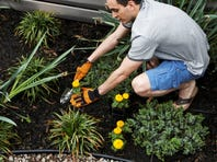 With the proper mindset and education, you can make the transition from landscaper to teacher.