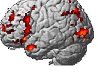 Has neuroscience left us 'Brainwashed'?
