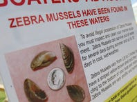 A sign alerts boaters to the presence of zebra mussels around Lewisville Lake, near Dallas. Zebra mussels may be small but the pesky, non-native shellfish are causing big headaches as they migrate southward into more North Texas lakes.