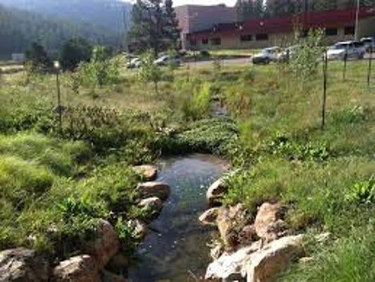 Bog-Springs
