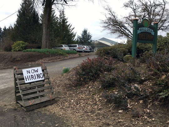 "This March 2, 2017, photo shows a sign saying ""Now Hiring"" in front of Brooks Tree Farm near Salem, Ore. Farmers, nursery and winery owners and others who depend on immigrant labor are predicting a catastrophe as federal immigration agents focus on stepping up arrests of people who are in America illegally."