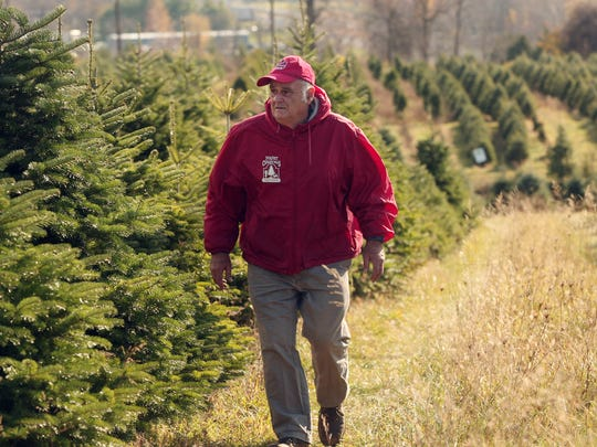 Perfect Christmas Tree Farm owner John Curtis will be competing for a national prize next year and the chance for his tree to be in the White House.