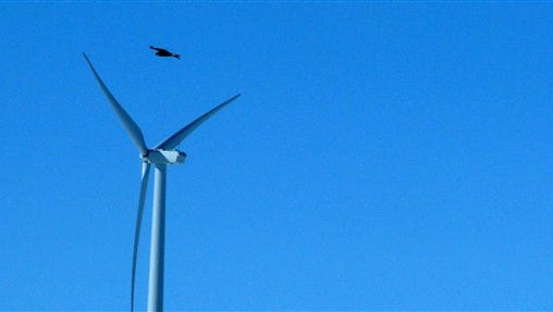 A golden eagle flies over a wind turbine in Wyoming.