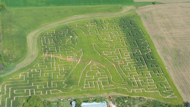 Meuer Farm in Chilton has an Elvis-themed corn maze this year.