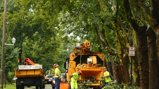 Contractors on Miller Road in Morristown remove an uprooted tree.