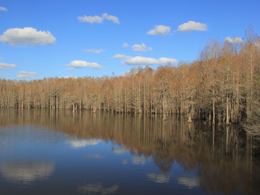 636542862065891134-Blue-Sky-smokehouse-lake.jpg