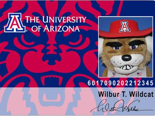 University of Arizona cat cards