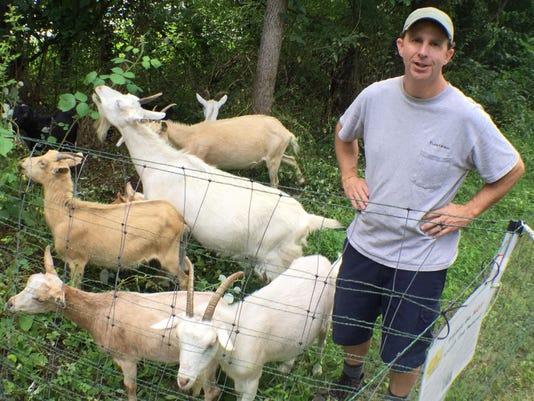 cpo-mwd-071118-Goats -at Rail-Trail