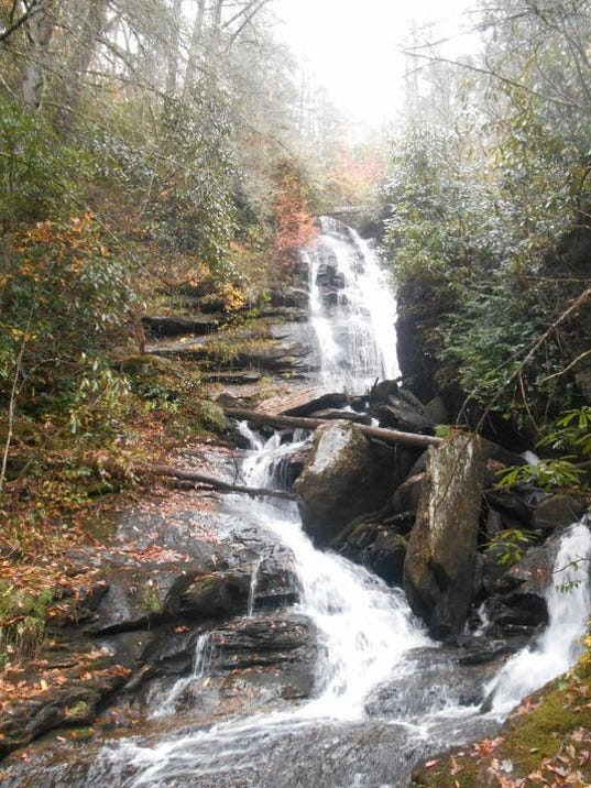East Fork Headwaters_2_(c)_N.C. Forest Service.jpg