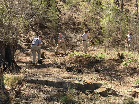 An AmeriCorps community service team saws and hacks through brush in a clearing project near Rio Bonito on Fort Stanton.