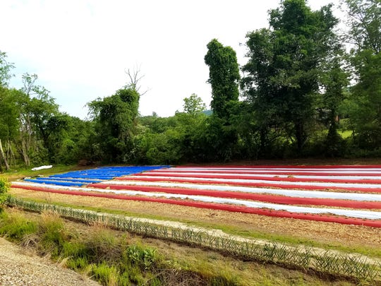 Volunteers planted an American Flag garden at the Veterans Healing Farm in Hendersonville this month. The nonprofit will donate the produce it grows to the patients at the Charles George VA Medical Center.