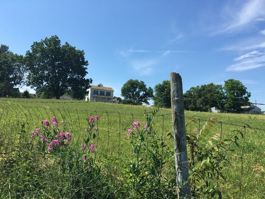 Five acres of farmland in Verona along Maury Mill Road