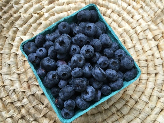 Blueberries picked at Owl's Head Blueberry Farm in
