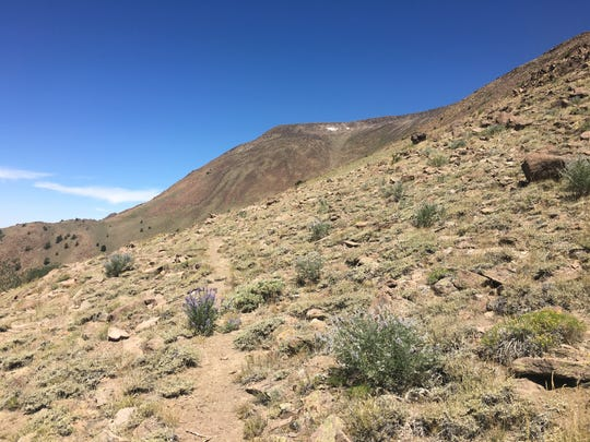 Trail to the south summit of Mt. Jefferson in Central Nevada.