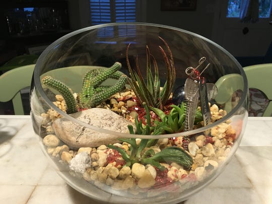 The bottom layer inside the terrarium should contain rocks, followed by a barrier layer of sheet moss that will keep soil from falling into the rocks.
