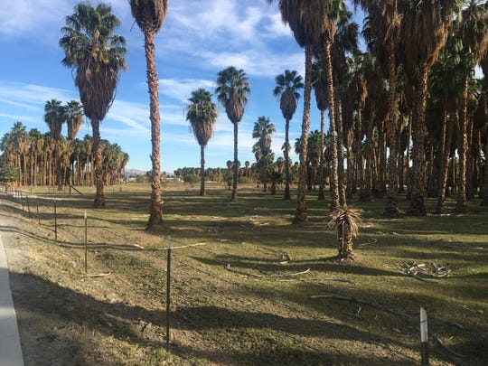 Site of a proposed park in Thermal, at Olive and Church streets, that is in the process of being gifted to the Desert Recreation District.
