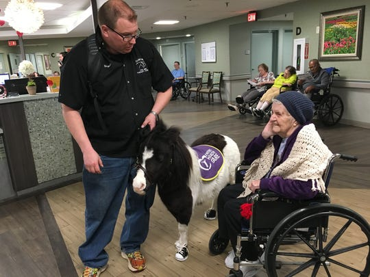 Shawn Emmons, handler of mini therapy horse Duncan, talks with Alice Weber about her memories of growing up on a farm.