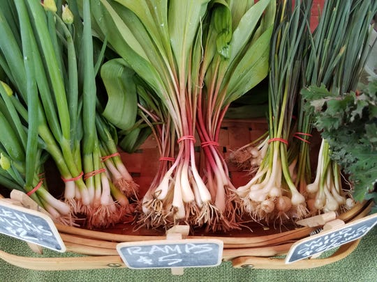 Ramps from Wendy Town Farms.