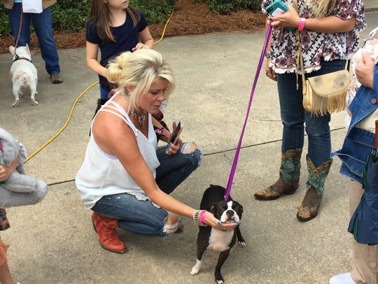 Taylor Crossing Animal Hospital holds its second annual