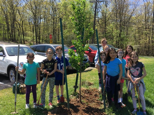 """On Friday, April 28th, the 4th grade Garden Club at Bayberry School planted a Yoshino Cherry tree in honor of Arbor Day. Pictured (left of tree) are Pryasha Sabharwal, Madison Burritica, Perry Weingarten, and (right of tree) are Garden Club advisor,  Anne DiParto (background), Daniella Ramos, Devon Voris, Kara Liem, Reese Fishelman, Casey Martino, and Garance Lesegretain."""