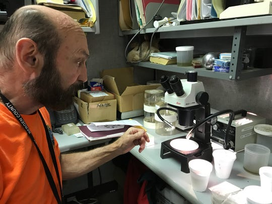 Victor Desevio,  chief inspector for the Bergen County Mosquito Control Division getting ready to identify mosquitoes under a microscope on May 5, 2017.