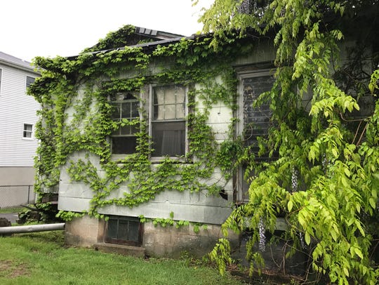 Nature reclaims the backyard of a home at 335 Ralph