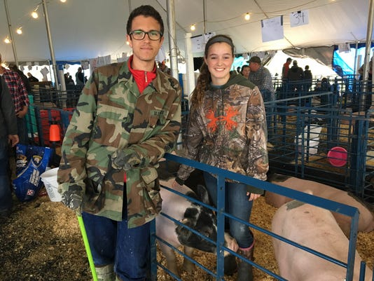 Market Animal Show
