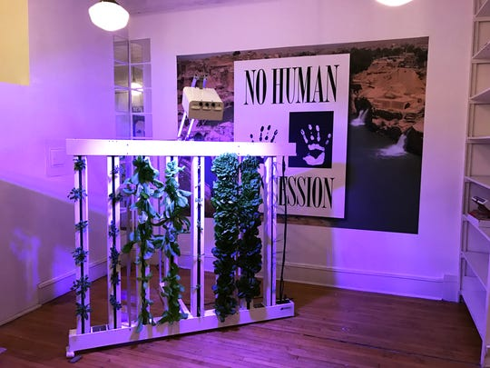 Kula Urban Farm's fully-sustainable hydroponic grow-tower is shown next to a work of mixed media by John Amelchenko.
