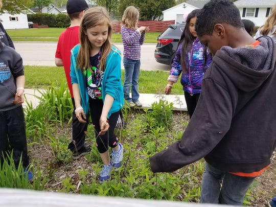 Monroe students look for plants and seeds at the South