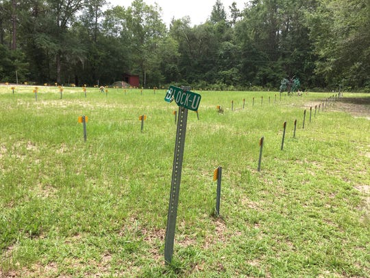 "Leon Serenity Cemetery, Leon County's indigent burial ground, is organized by letter-named ""blocks."""