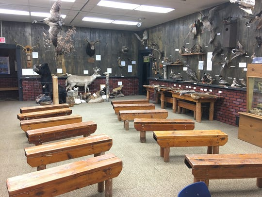 The Jordan Nature Center offers offers exhibits for
