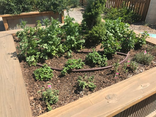 Raised bed gardens on the Jessup Farm Farmhouse restaurant grow herbs and vegetables used in the kitchen and bar.