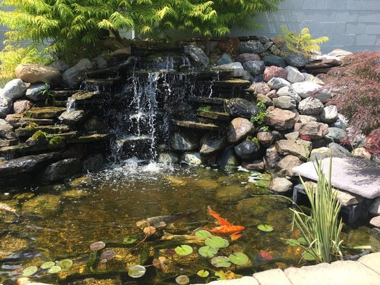 The outdoor water garden at Preuss Pets was built by
