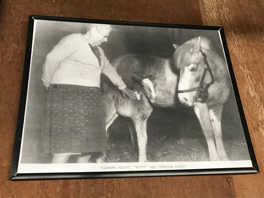 "Family memorabilia at the Beebe Ranch includes black and white photos from the Misty's era. In this shot, Ida ""Grandma"" Beebe stands with Misty and her first foal, Phantom Wings."