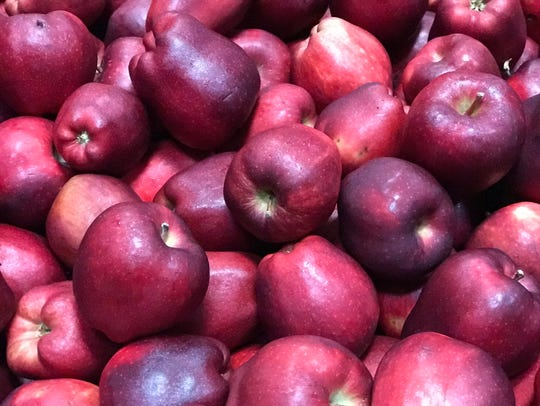 About 40,000 pounds of apples were delivered.