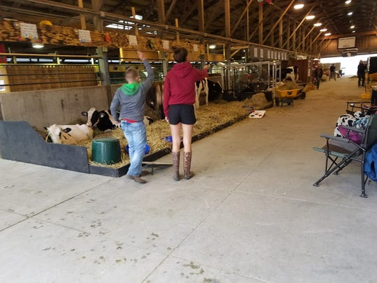 Junior competitors play after finishing their morning chores at Wisconsin State Fair.