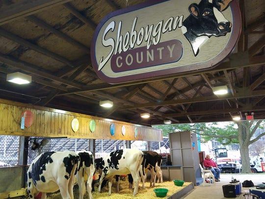 Rodney Bohnhoff keeps watch over cows scheduled for
