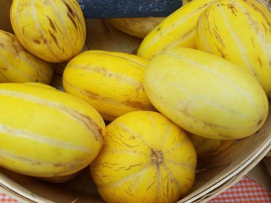 Jewel melons from Flying Cloud Farm.