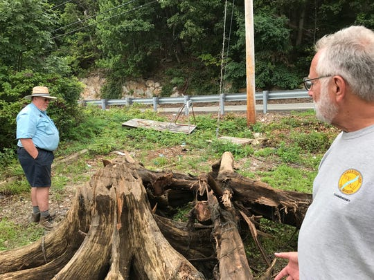 Mark Johnson (left) shows Paul Zarrillo some of the stumps he has cut and hauled from the shallows of Greenwood Lake. The hazardous stumps are being removed though a state grant.