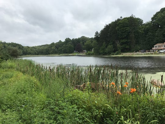 Nosenzo Pond in West Milford, as seen on Aug. 15, 2017.